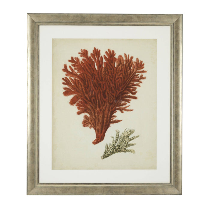 Buy online latest and high quality Antique red corals set of 6 Prints from Eichholtz | Modern Lighting + Decor
