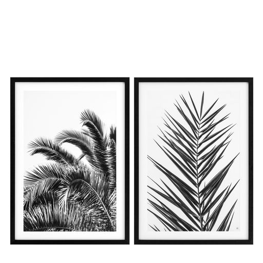 Palm Leaves set of 2 Prints   by Eichholtz | Modern Lighting + Decor