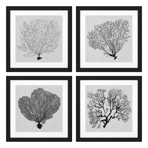 Shadow Sea Fans set of 4 Prints   by Eichholtz | Modern Lighting + Decor