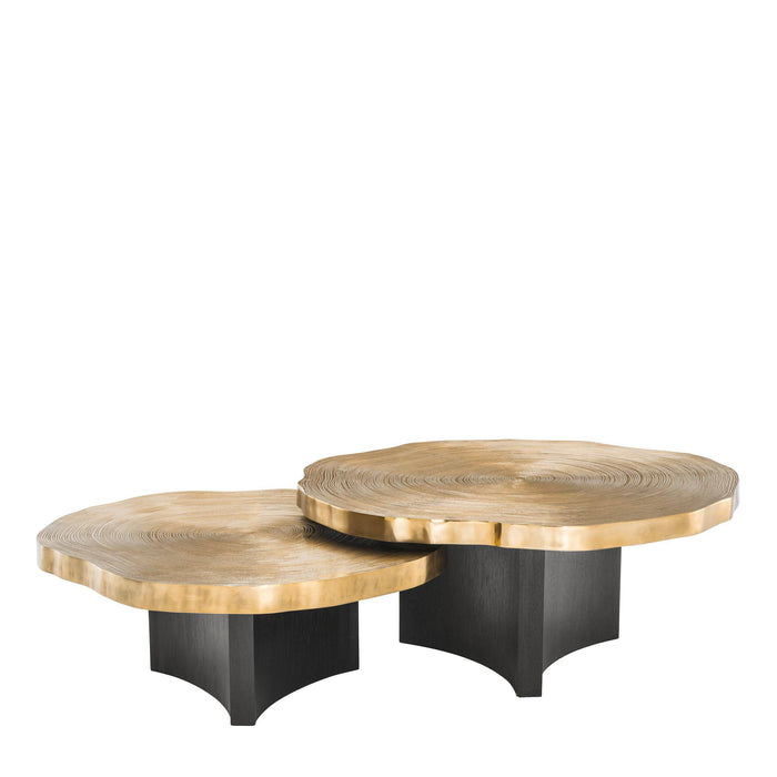 Buy online latest and high quality Thousand Oaks set of 2 Coffee Table from Eichholtz | Modern Lighting + Decor