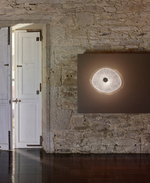 Onn Wall / Ceiling Light | Modern Lighting + Decor