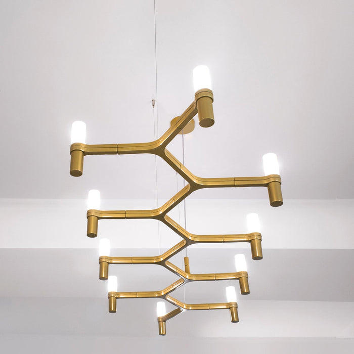Buy online latest and high quality Crown Plana Linea Suspension from Nemo Italianaluce | Modern Lighting + Decor
