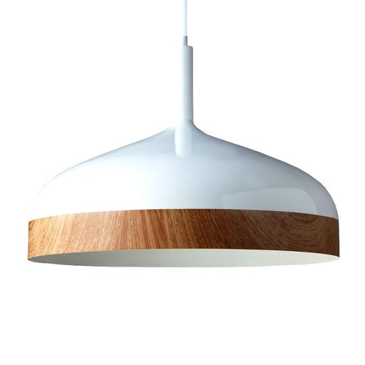 Buy online latest and high quality Rimba L Pendant Light from Absinthe | Modern Lighting + Decor