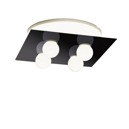 Areaqua 55/SP LED Wall/Ceiling Light from Vesoi | Modern Lighting + Decor