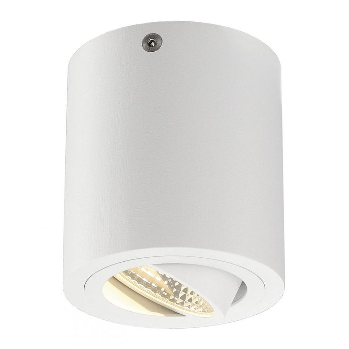 TRILEDO white, 1-light source Ceiling Light  | Modern Lighting + Decor