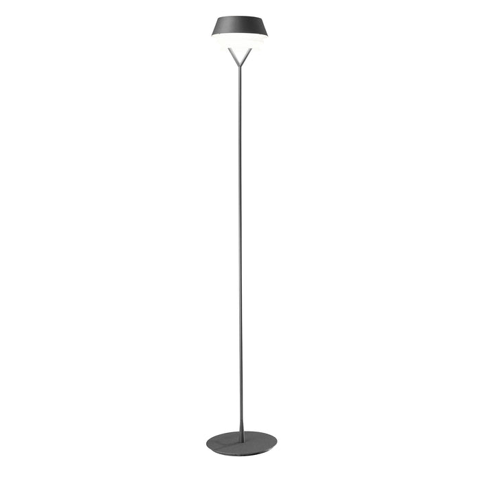 Gala Floor Lamp from Carpyen | Modern Lighting + Decor