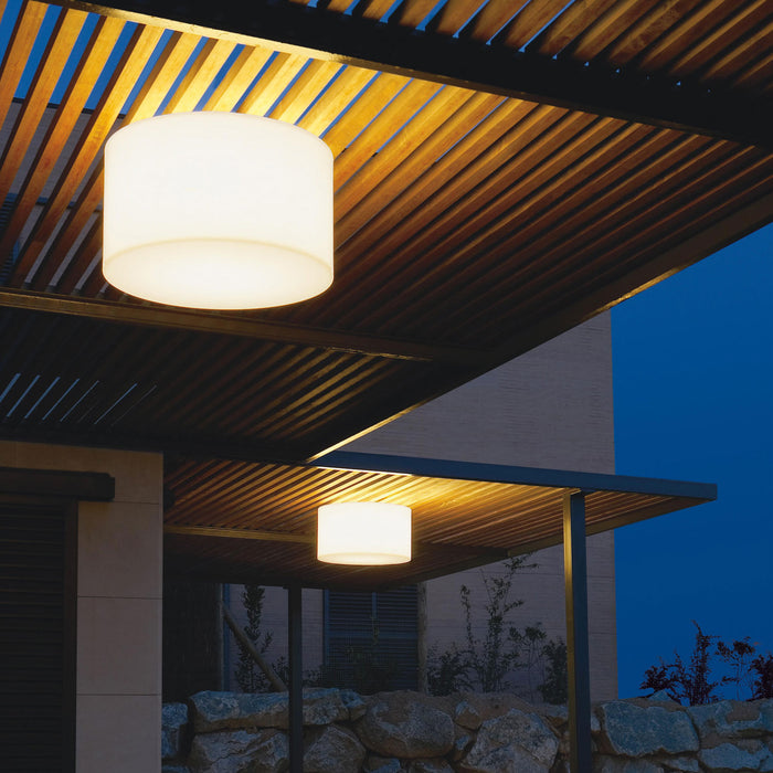 Buy online latest and high quality Harry Outdoor Ceiling Light from Carpyen | Modern Lighting + Decor