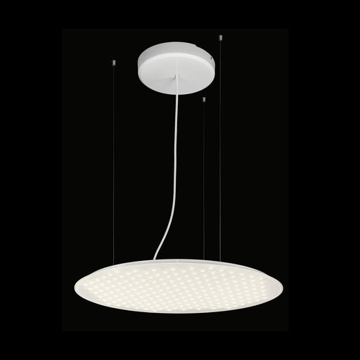 Modul R 600 Project Pendant Light from Nimbus | Modern Lighting + Decor