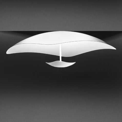 Buy online latest and high quality Penombra C2 Ceiling Light from Anton Angeli | Modern Lighting + Decor