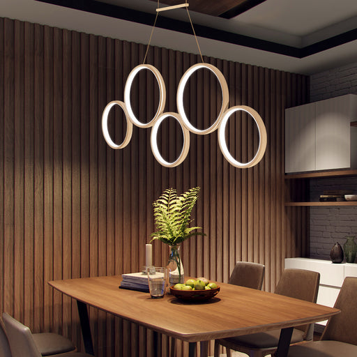Circle Rings LED Pendant Light from Interior Deluxe | Modern Lighting + Decor