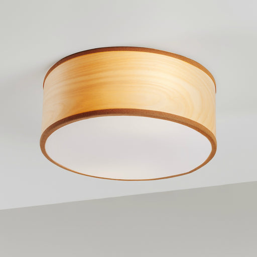 Tait 250 Flush Mount from Traum | Modern Lighting + Decor