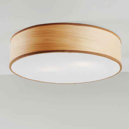 Buy online latest and high quality Tait Ceiling Light from Traum | Modern Lighting + Decor