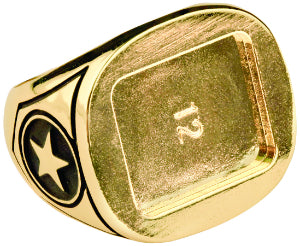 Size 9 Gold Champion Ring