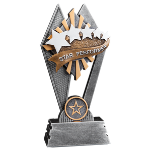"7"" Star Performer Sun Ray Award"