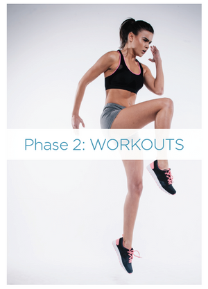 Kick start plan for rapid results and Improved health phase 2