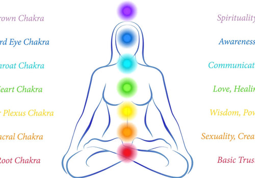Staying aligned with the 7 Chakras