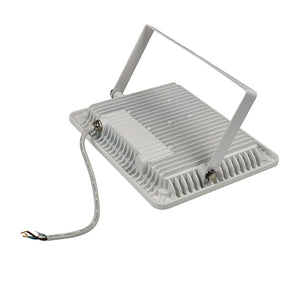 Flood light 100W Ultra-Thin Outdoor - EverBrite