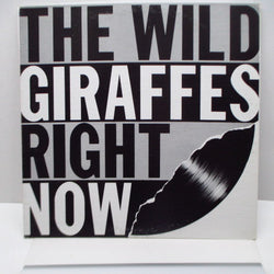 WILD GIRAFFES, THE - Right Now (US Orig.LP)