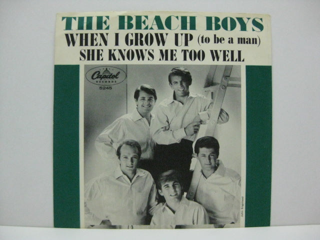 BEACH BOYS - When I Grow Up (P.S)