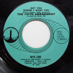 FIFTH AMENDMENT - Got You Where I Want You (薄青ラベ)