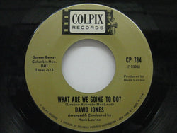 DAVID JONES - What Are We Going to Do?