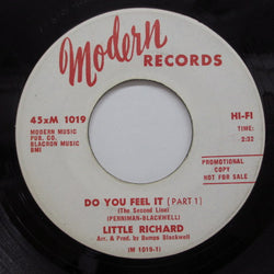 LITTLE RICHARD - Do You Feel It (Pt.1 & 2) (Promo)