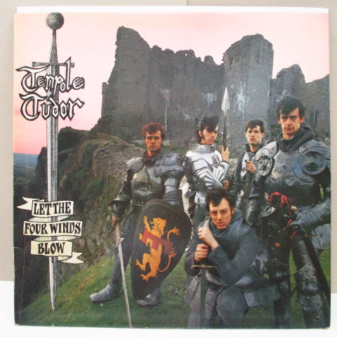 TENPOLE TUDOR - Let The Four Winds Blow (UK Orig.LP)