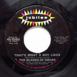 BLADES OF GRASS - That's What A Boy Likes (Orig)