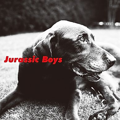 JURASSIC BOYS -  S.T (LP+DL Code/NEW)