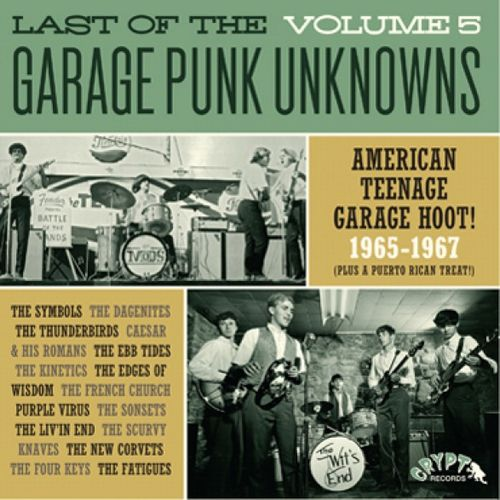 V.A. - Last Of The Garage Punk Unknowns Vol.5 (German Ltd.LP)