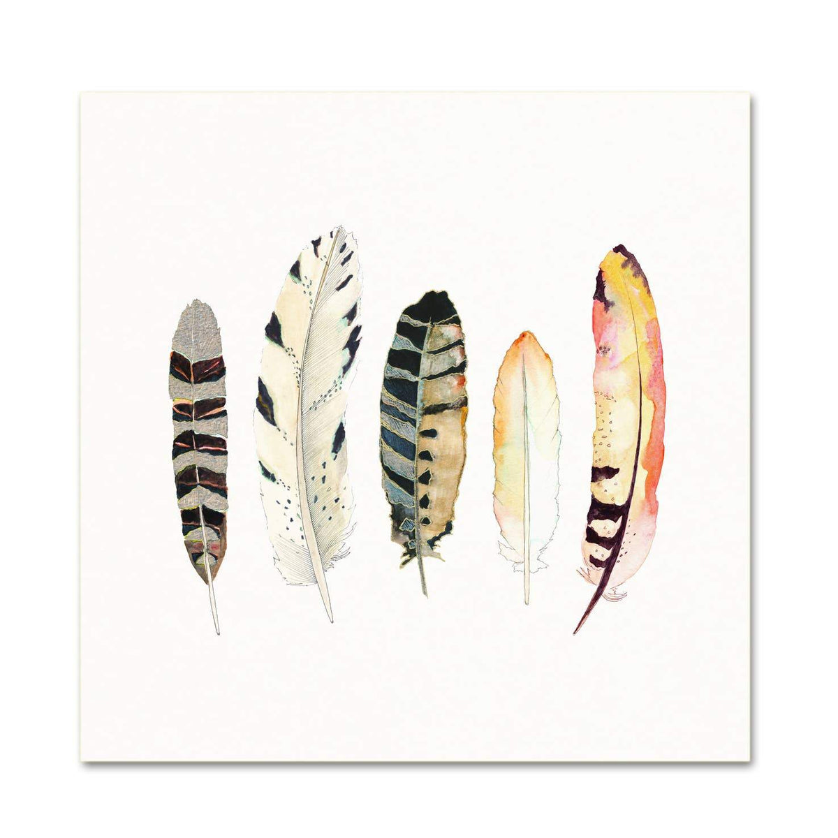 5 Feathers #6 art print Snoogs & Wilde Art