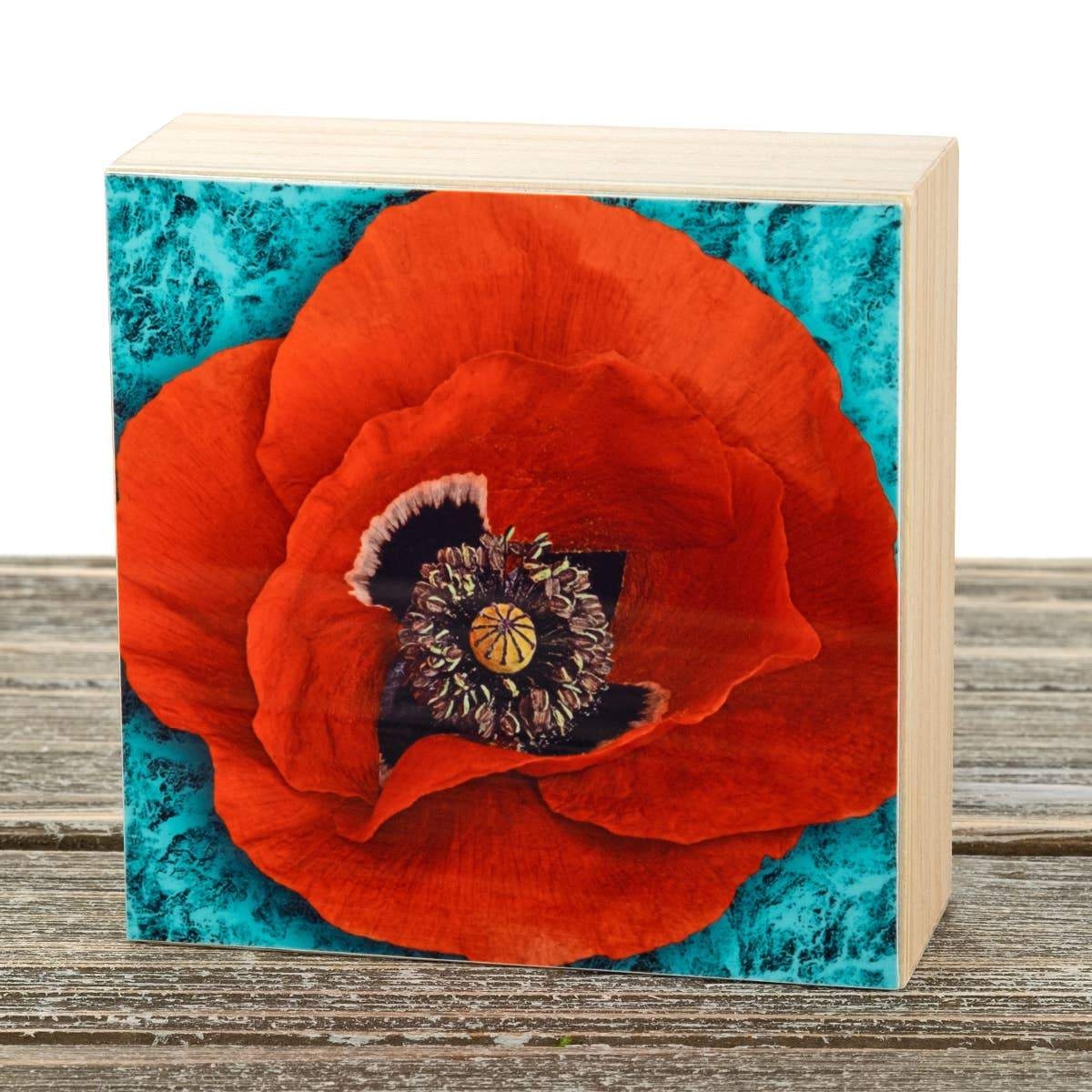 Poppy Aluminum Photo on Wood Block art print ANVIL metals studio