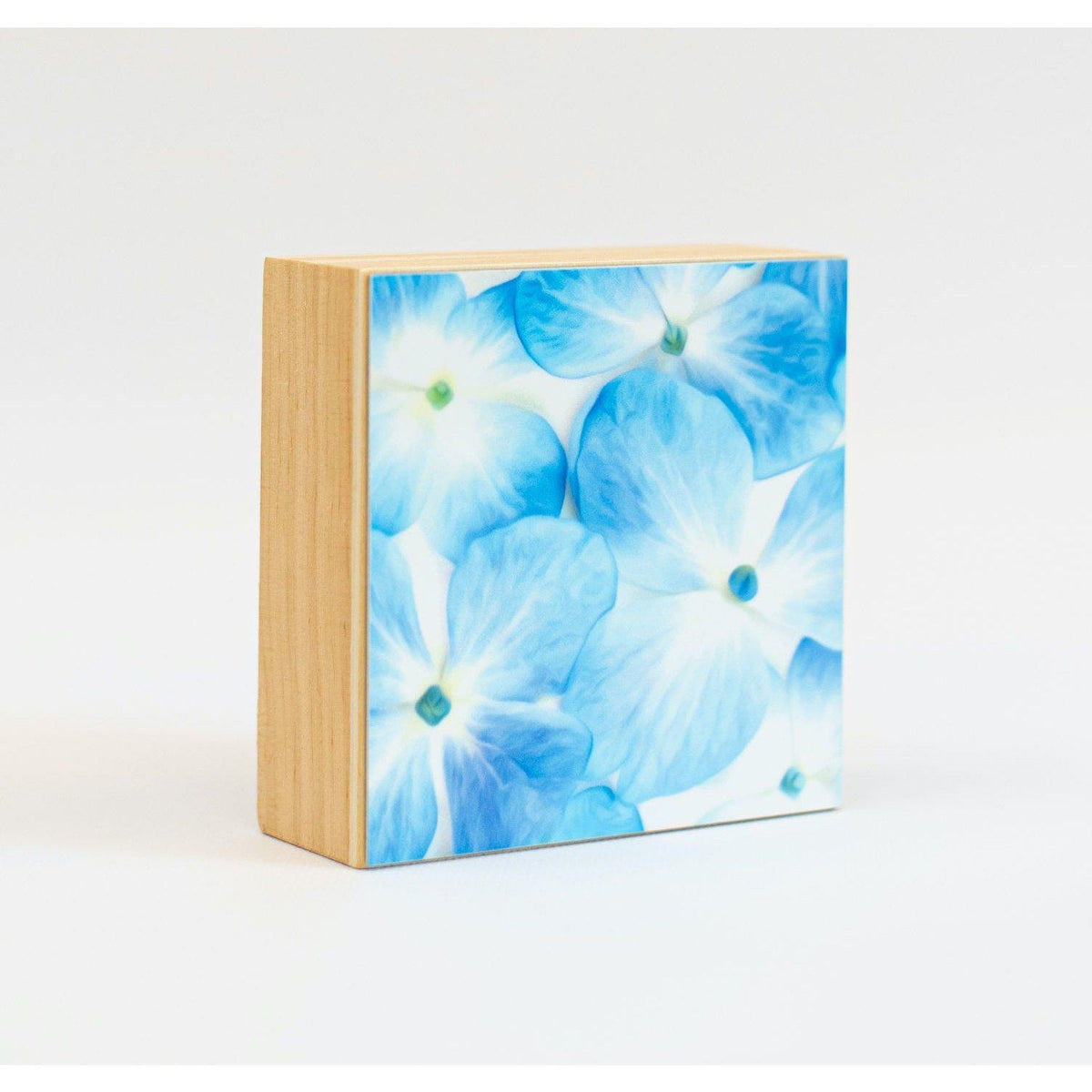 Hydrangea Aluminum Photo on Wood Block art print ANVIL metals studio