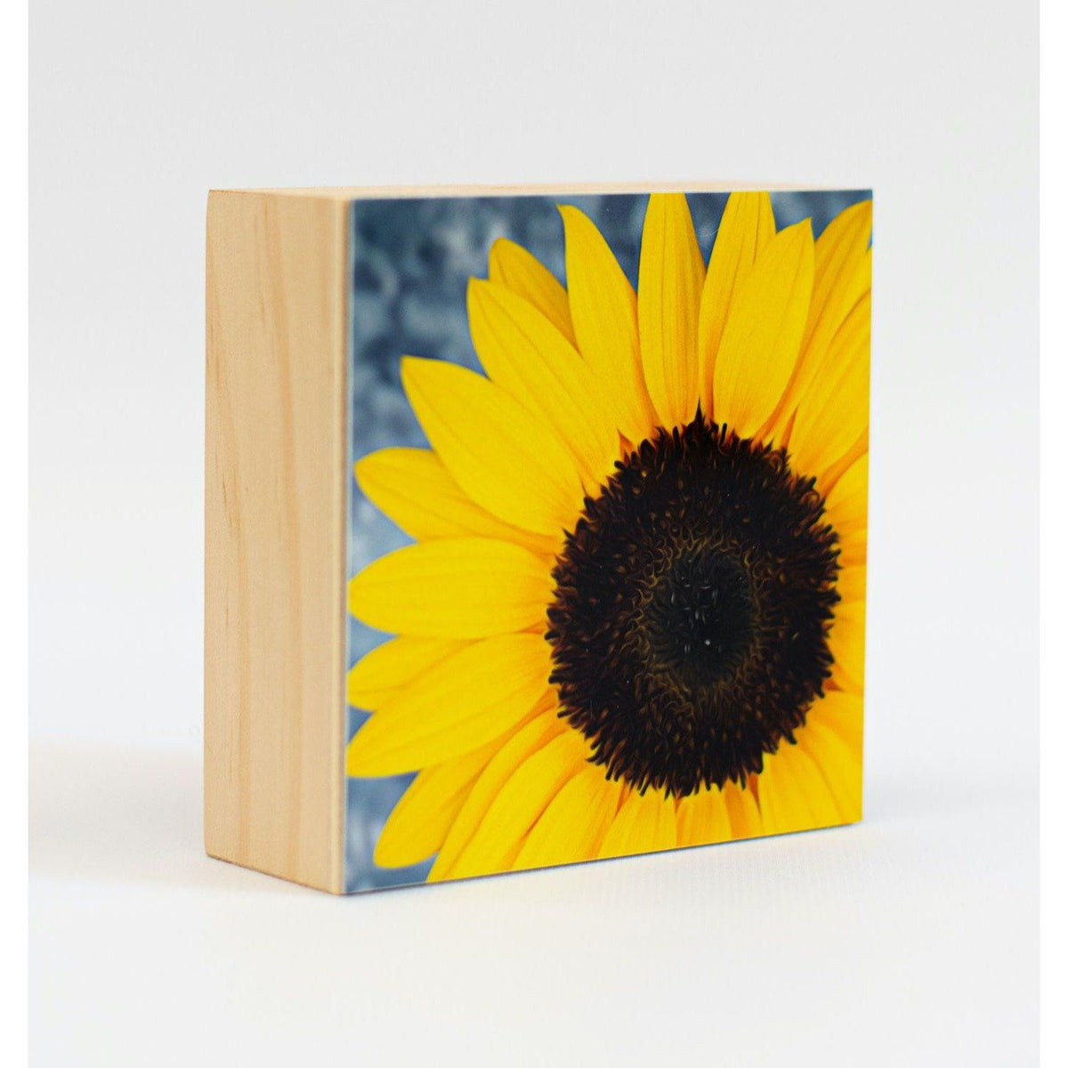 Sunflower Aluminum Photo on Wood Block art print ANVIL metals studio