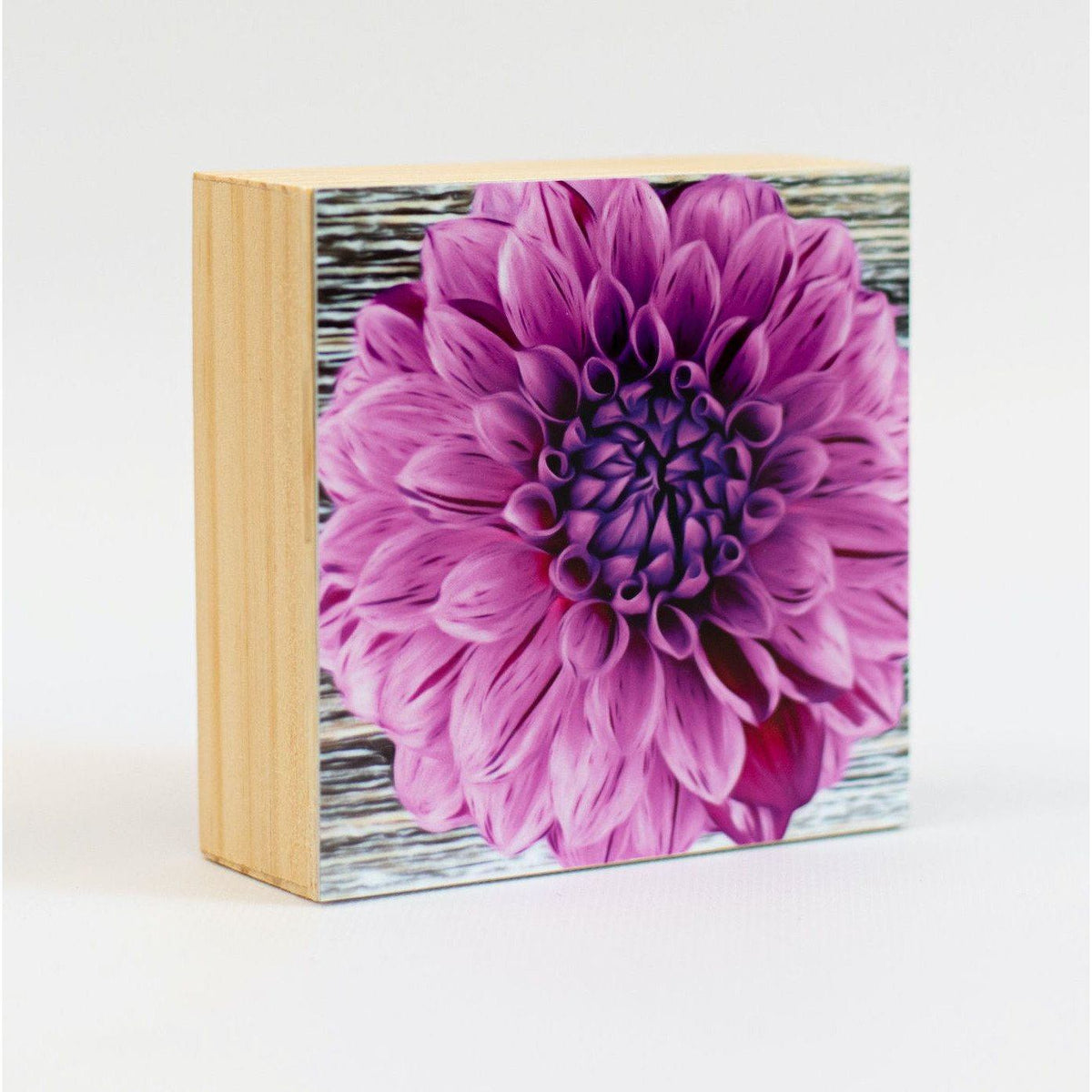 Dahlia Aluminum Photo on Wood Block art print ANVIL metals studio