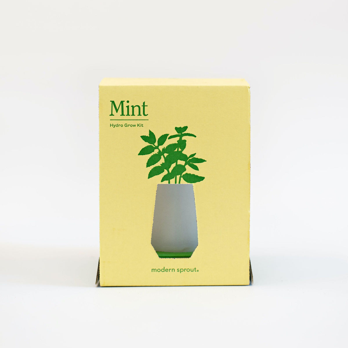 Grow Your Own Mint plant Modern Sprout