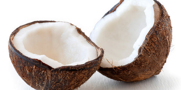 Coconut: The Fruit of Life