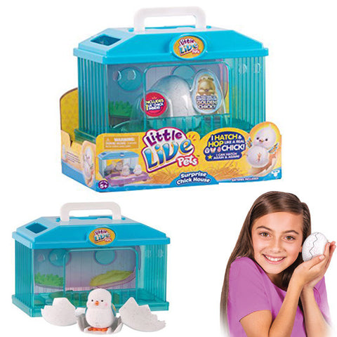 The Little Live Pets S1 Hatching Surprise Baby Chick in House Playset