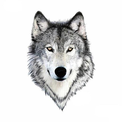Tatouage Loup Petit | Animal Totem Shop