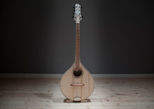 Load image into Gallery viewer, Irish Bouzouki