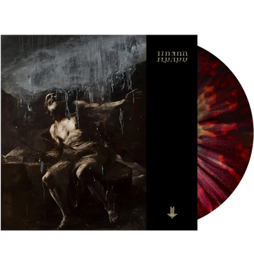 BEHEMOTH - 'I Loved You At Your Darkest' 2xLP