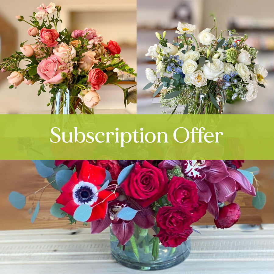 Beautiful Flowers by Subscription - 3 Months with 15% discount