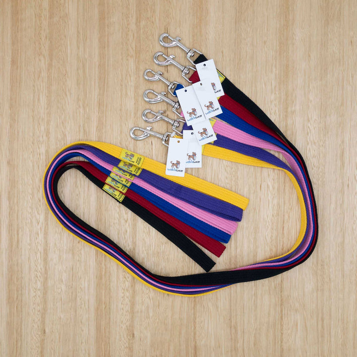 20mm x 1.2 metre Webbing Lead with Medium Clip - Give Paws