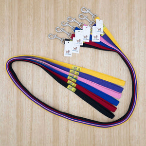 20mm x 1.5 metre Webbing Lead with Medium Clip - Give Paws