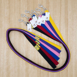 25mm x 1.5 metre Webbing Lead with Large Clip - Give Paws