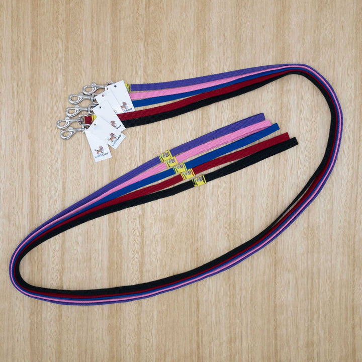 12mm x 1.8 metre Webbing Lead with Light Clip - Give Paws
