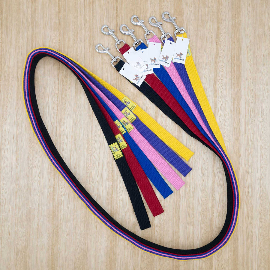25mm x 1.8 metre Webbing Lead with Large Clip - Give Paws