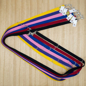 25mm x 2.2 metre Webbing Double Ended Lead with Large Clips - Give Paws