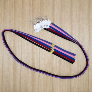 12mm x 2 metre Webbing Lead with Extra Light Clip - Give Paws