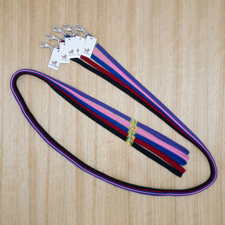 12mm x 2 metre Webbing Lead with Light Clip - Give Paws
